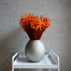 Tørrede Blomster - Glixia, Orange